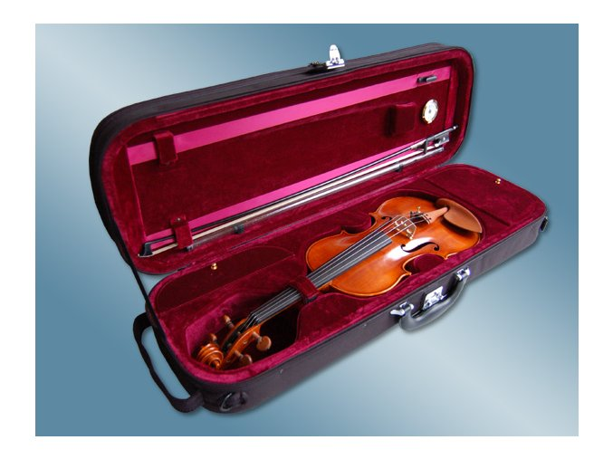 2000160 houslové pouzdro LUXUS vlhkoměr