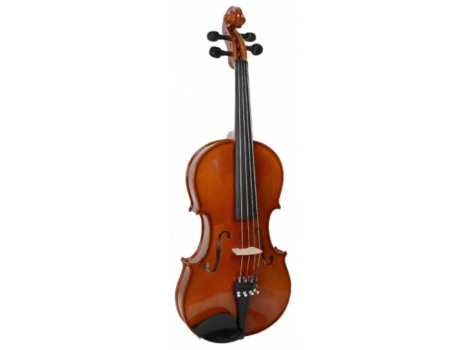 2500319 strunal viola 3 60 a