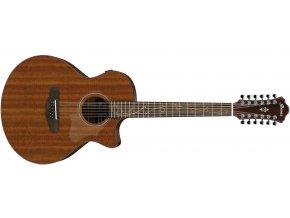 IBANEZ AE2912 12str.kytara masiv 1