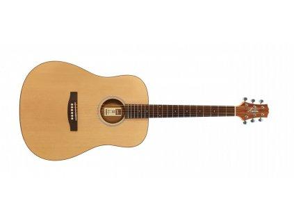 akusticka kytara ashton d20 nt 531723.761696527