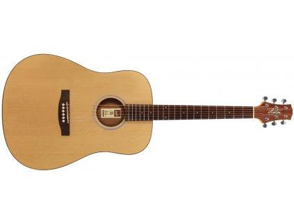 akusticka kytara ashton d20s nt 519380.761696527