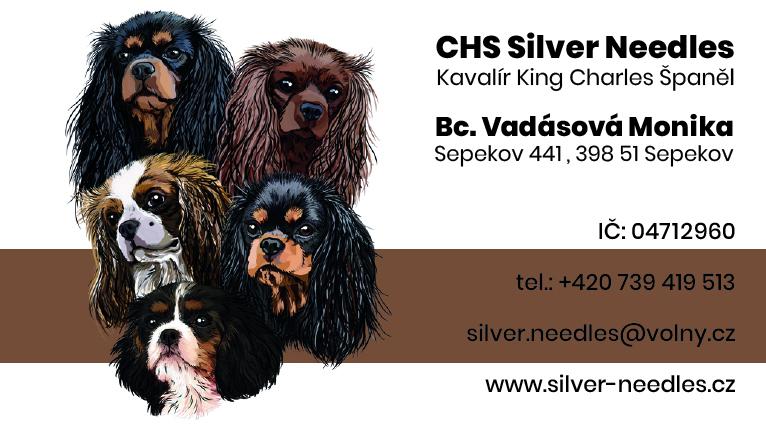 CHS Silver Needles
