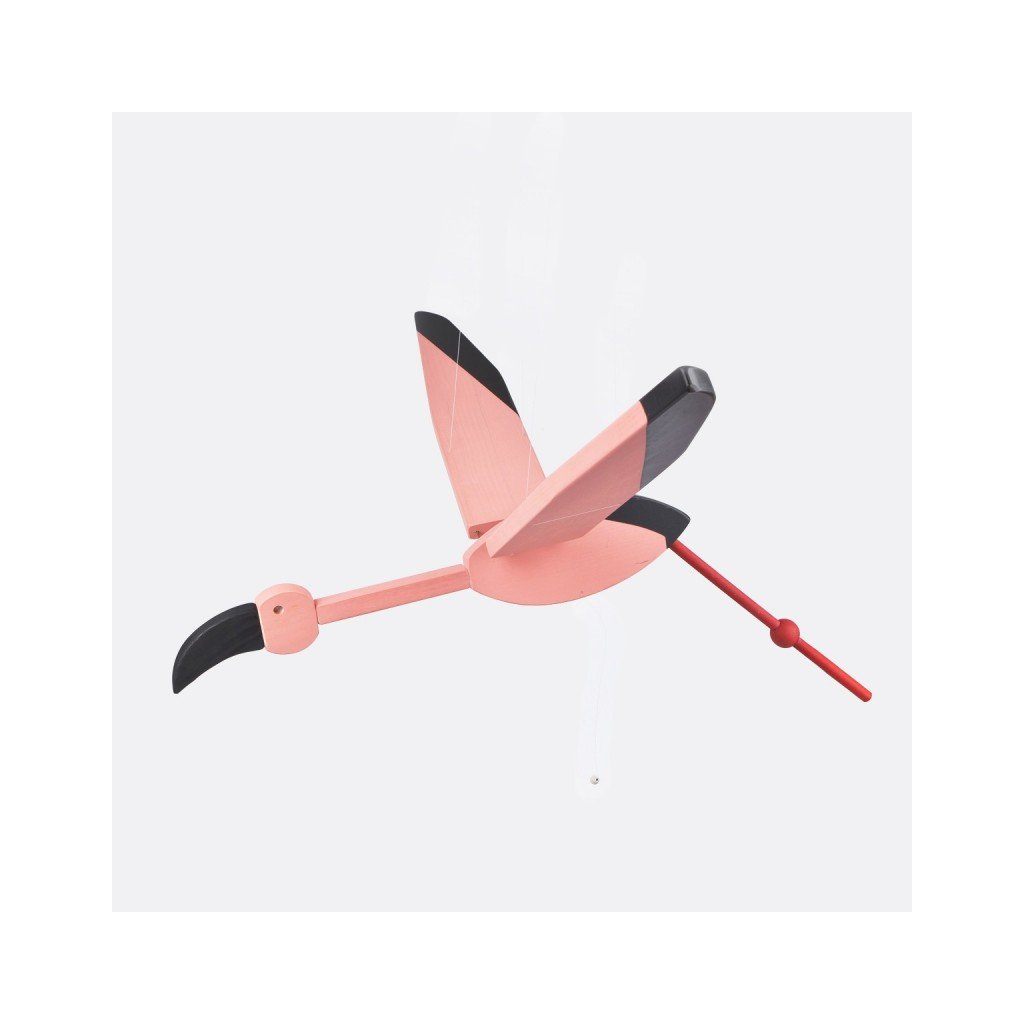 Létající plameňák malý