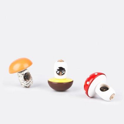 Káča houba