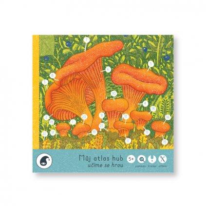 houby bily podklad