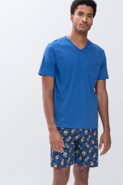 Pánske pyžamo Mey Robben Island 33012