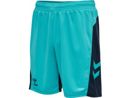HUMMEL 210988 - Trenky hmlACTION SHORTS