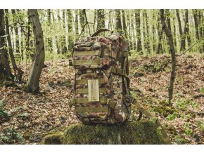 Mil Tec US Assault Pack LG MULTITARN 36l