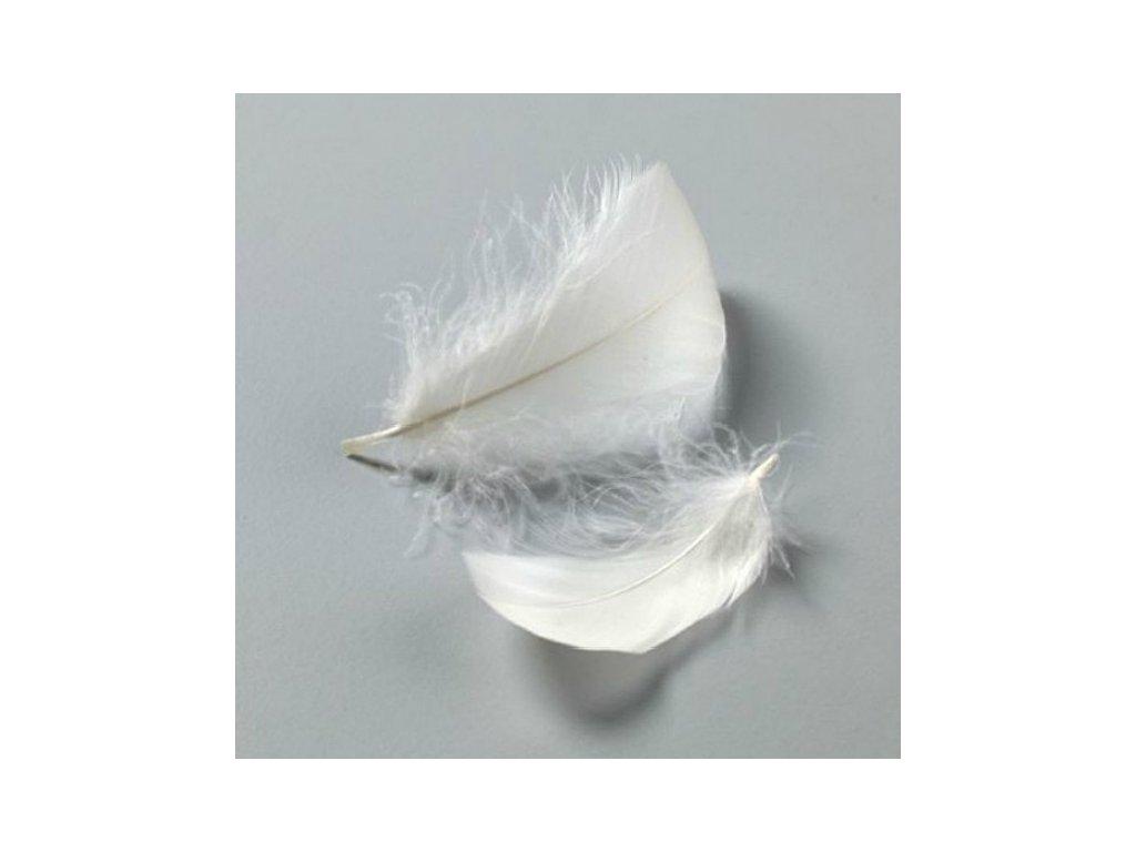 Efco - BAREVNÉ PEŘÍ / WHITE - bílé peří, 10 gr