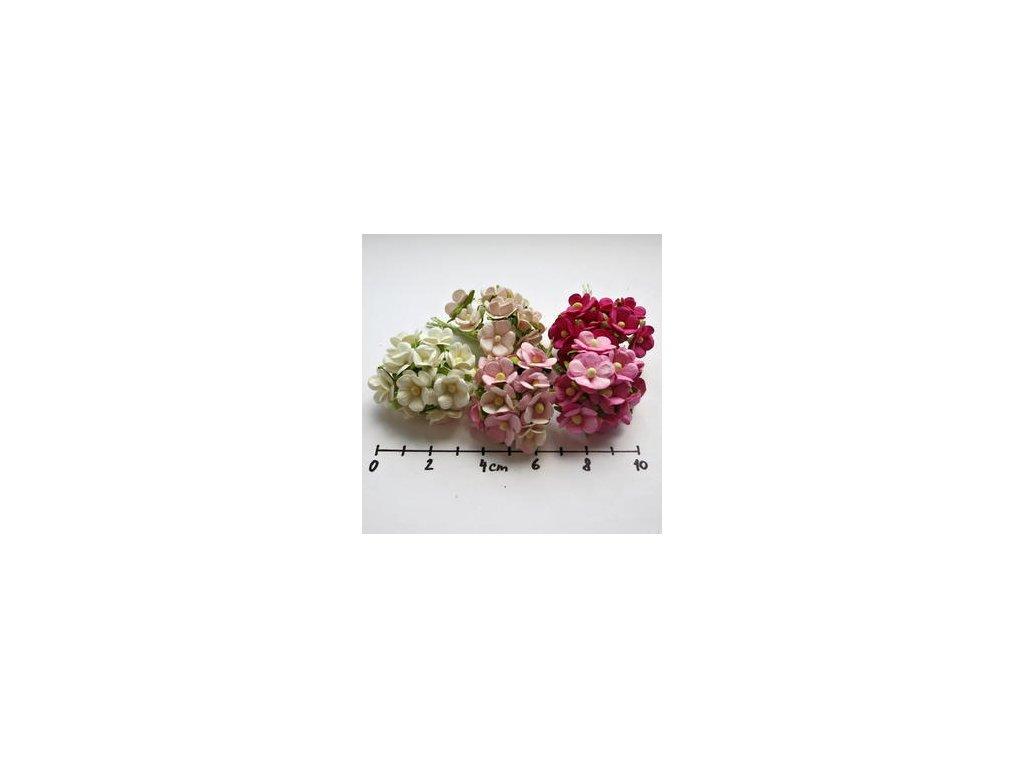 MIXED PINK& WHITE SWEETHEART BLOSSOM / 50 ks - papírové kytky