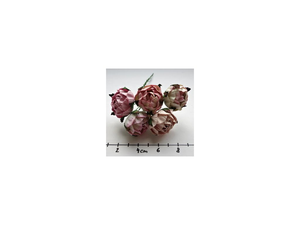 MIXED PINK ENGLIGH ROSES / 5 ks - papírové kytky