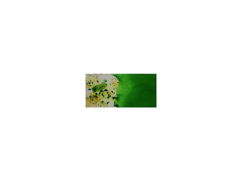 7782 5908b2704f252716937970 colourcraft brusho colours 15g leaf green large