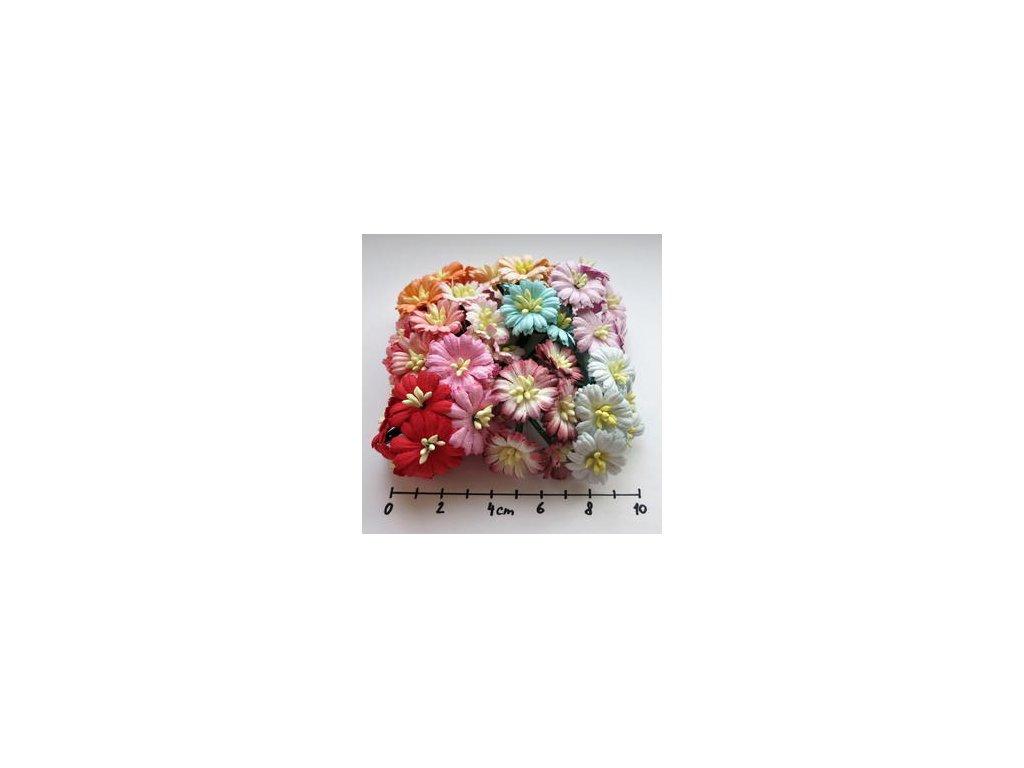 MIXED COLOUR COSMOS DAISY STEM FLOWERS / 50 ks - papírové kytky