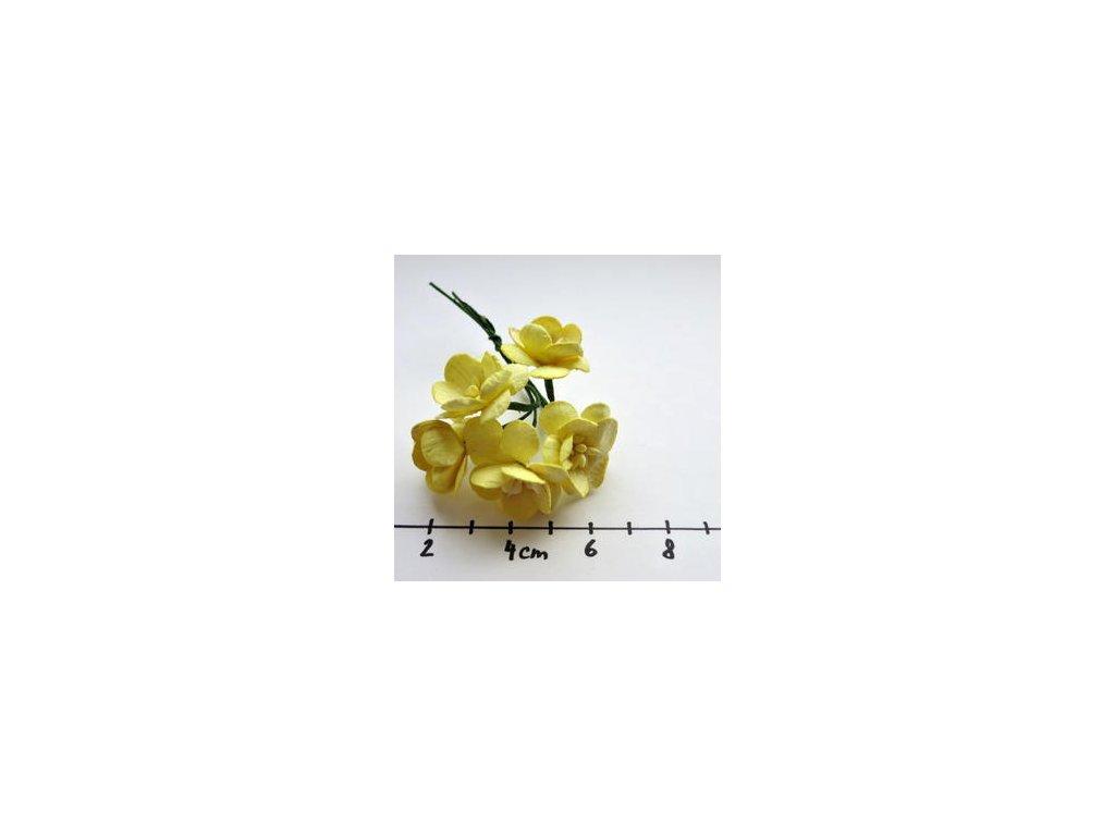 YELLOW MULBERRY PAPER CHERRY BLOSSOMS / 5 ks - papírové kytky