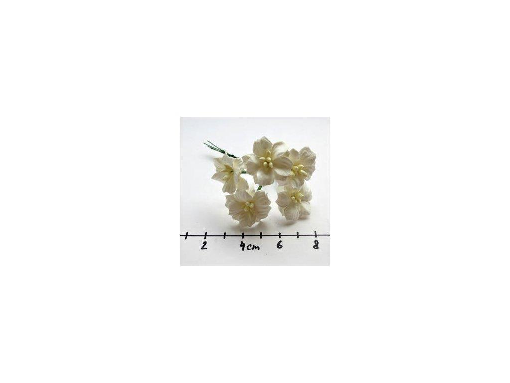 WHITE MULBERRY PAPER APPLE BLOSSOMS / 5 ks - papírové kytky