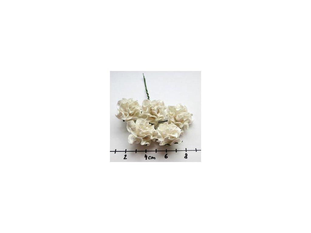 IVORY TUSCANY ROSES  / 5 ks - papírové kytky