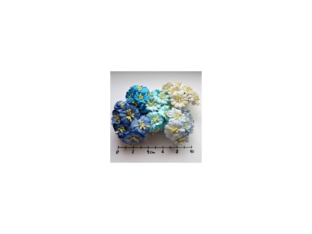 MIXED AQUA/BLUE COSMOS DAISY STEM FLOWERS / 50 ks - papírové kytky