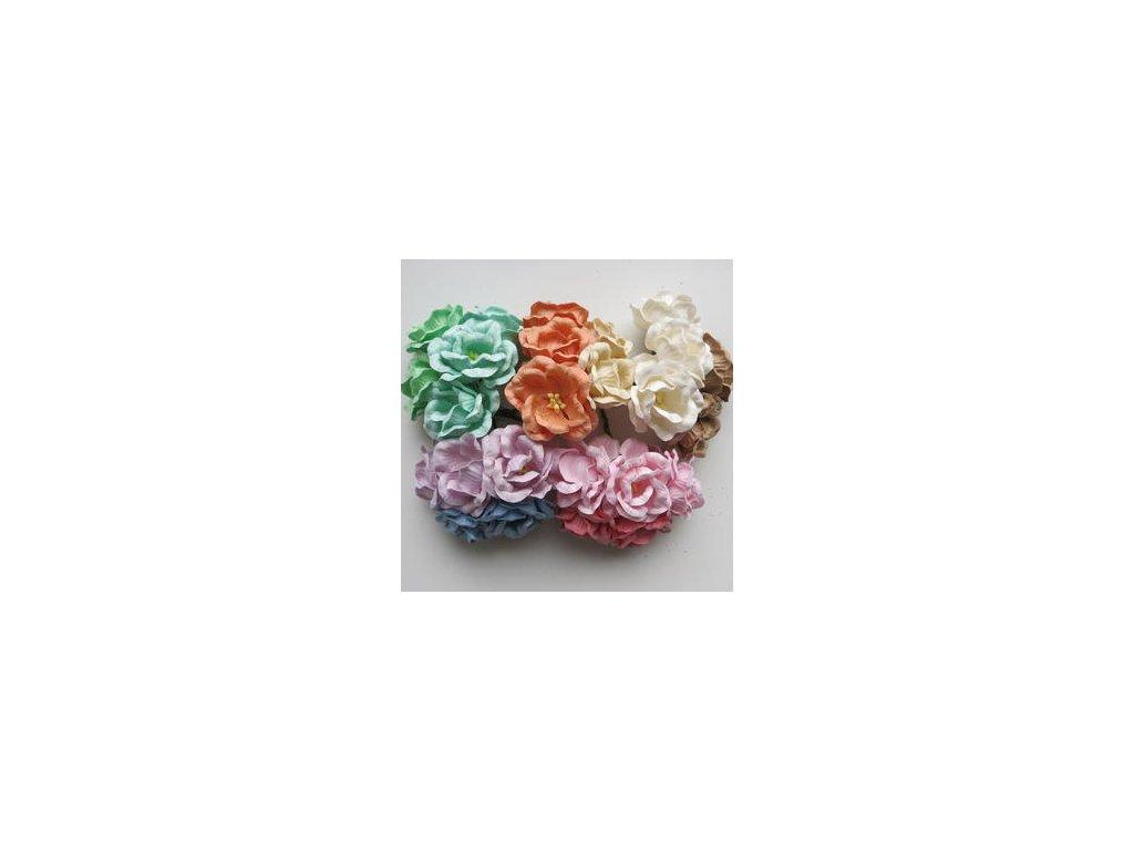 ROSES / MIX PASTEL - papírové kytky - 25 ks