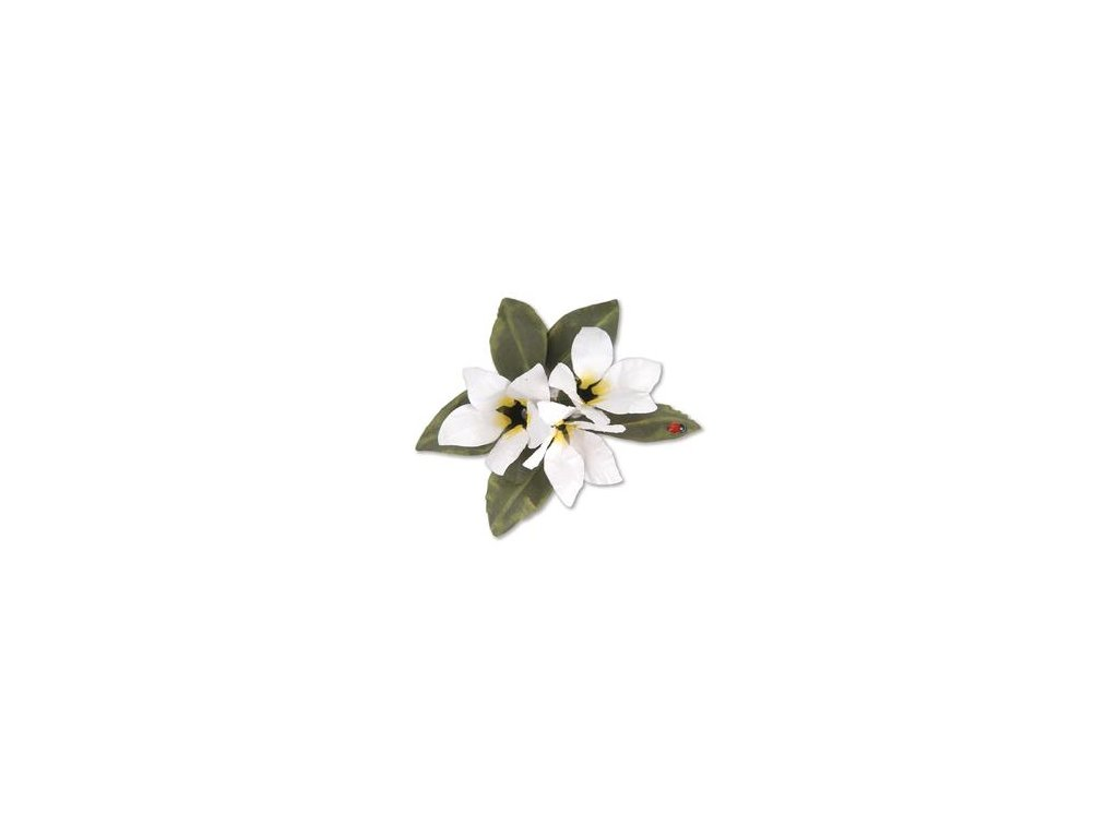 sale 659264 sizzix thinlits die set 8pk flower stephanotis by susan tierney cockburn 31000 p