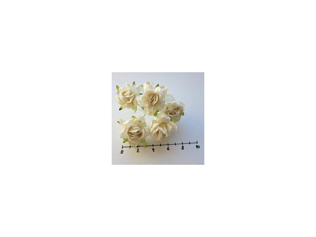 LARGE IVORY WILD ROSES / 5 ks - papírové kytky