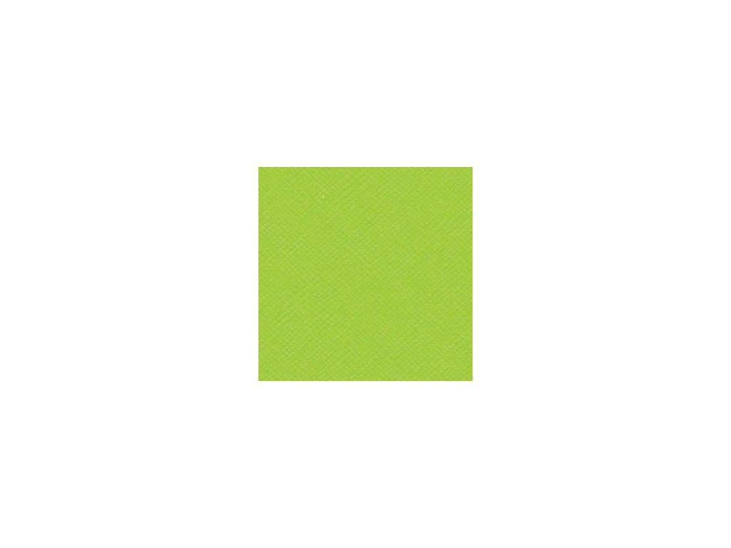 bazzill basics 12x12 cardstock limeade crisscross texture 3021233 0 1298135492000