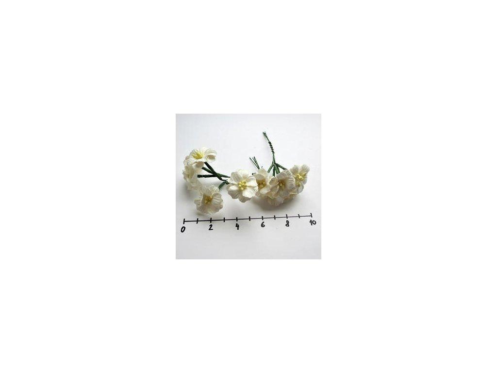 MULBERRY PAPER APPLE BLOSSOMS / jabloňové květy / 10 ks - papírové kytky
