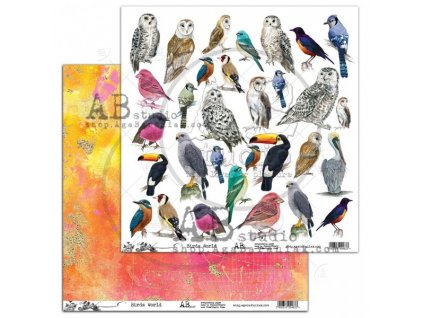 scrapbooking paper abstudio birds worlzd12 x12