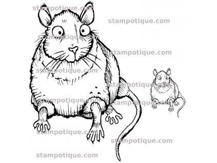 4061p rat witjh baby