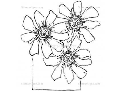 13011p 3 daisies