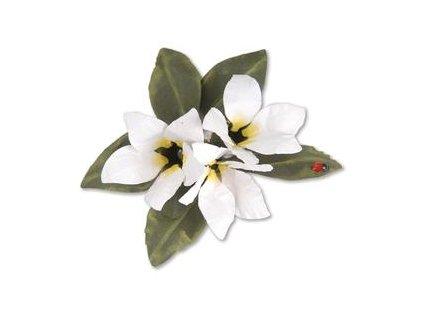 sale 659264 sizzix thinlits die set 8pk flower stephanotis by susan tierney cockburn 31000 p