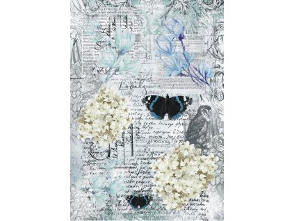 13 rts blue magnolia butterflycollage a4 13arts 42140 0