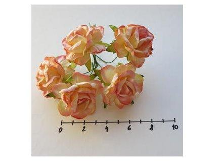 LARGE 2-TONE CHAMPANGE PINK WILD ROSES / 5 ks - papírové kytky
