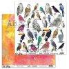 scrapbooking paper abstudio birds worlzd12 x12