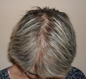 009-před-zahuštěním-Mane-husté-vlasy