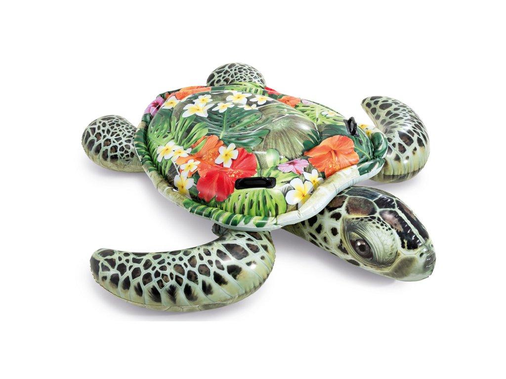 Nafukovací želva jako živá