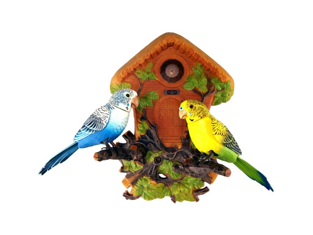Zpívající a opakovací ptáčci na zeď