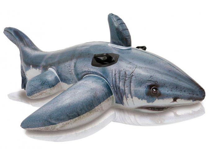 Nafukovací žralok jako živý