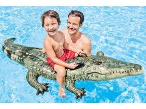 Nafukovací krokodýl jako živý