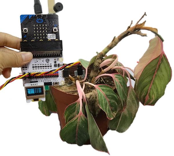 BBC micro:bit kutilský kit - projekt 05: Monitor rostlin
