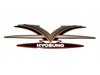 [22-1] Samolepa (FIG31) - Hyosung GV 250