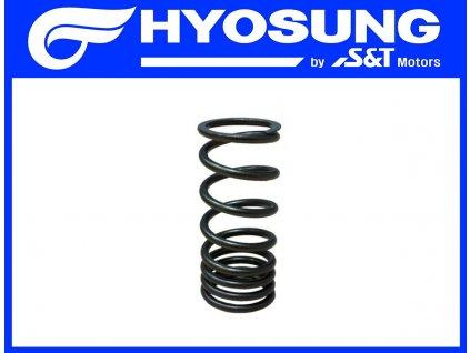 [10] Pružina ventilu (FIG08) - Hyosung GT 650 S & R