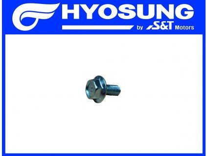 [8] Šroub (hlava zadního válce) - Hyosung GV 250