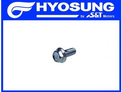 [21] Šroub (stupačky & řadící páka) - Hyosung GV 250