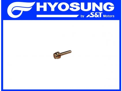 [29] Seřizovací šroub (FIG05) - Hyosung SF 50 B (RACING)