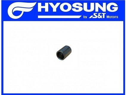 [17] Pouzdro (FIG01h) - Hyosung GV 650