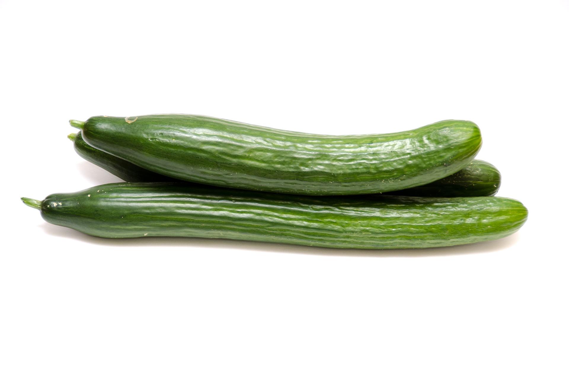 cucumbers-1799262_1920