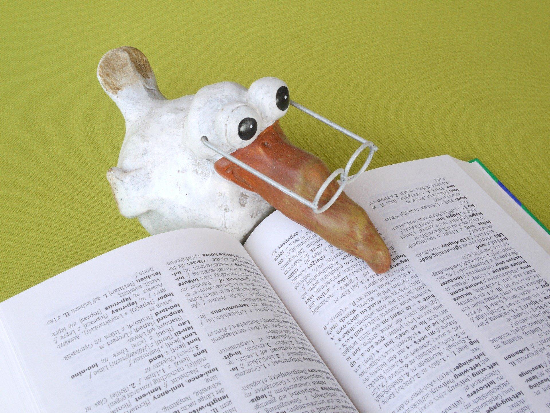 S pravopisem vám pomůže Internetová jazyková příručka!