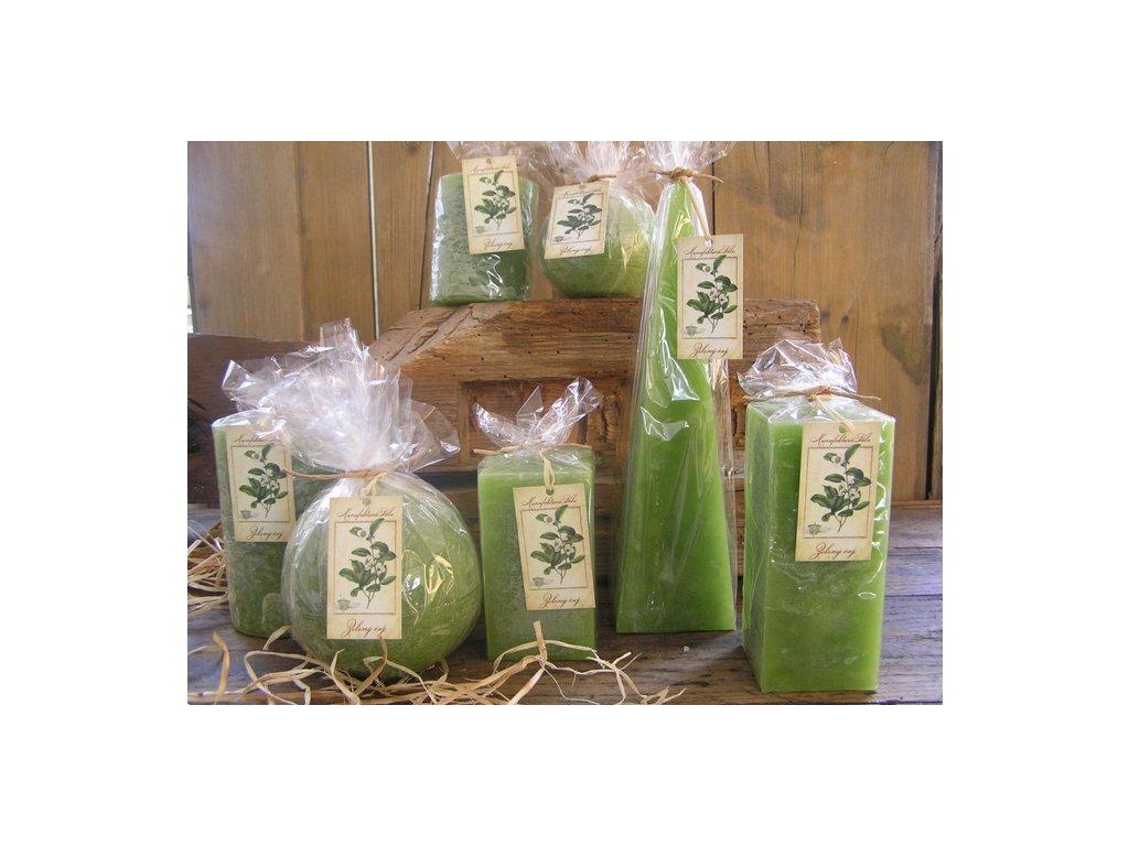 herbář zelený čaj