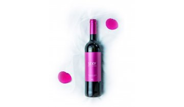 fitapreta sexy wines red 1024x1269