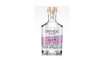Monti gin citrus 416x624